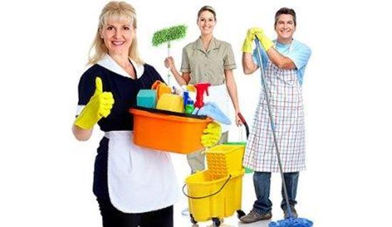 Seguro desemprego empregada doméstica