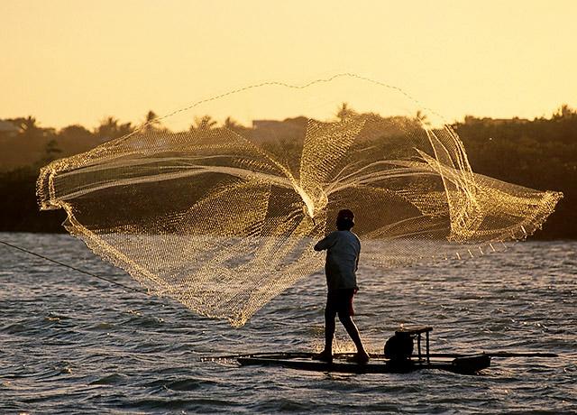seguro desemprego pescador